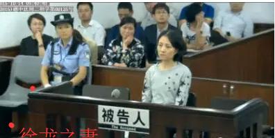广东移动原董事长徐龙判无期 妻子判4年——涉嫌受贿罪
